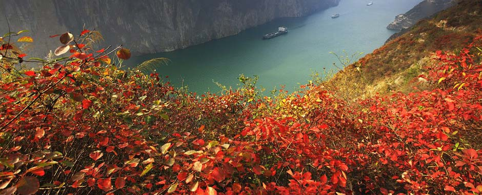 The Best Time to Visit Chongqing