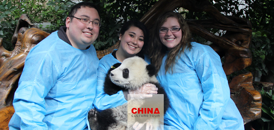 Giant Panda Discovery Tours