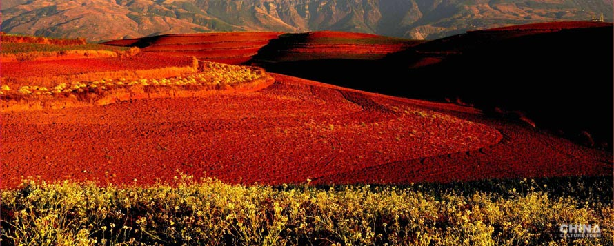 Colorful Red Land & Breathtaking Terraced Fields